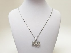 925 Sterling Silver Necklace with Charm for Women